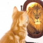 Subir la autoestima