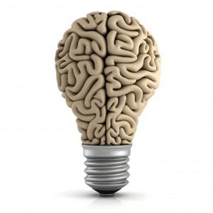 El 75% del cerebro es agua